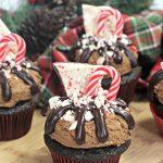 peppermint park cupcakes